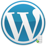 Review Of WordPress Backup Solutions