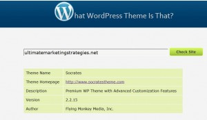 What WordPress Theme Is That Screenshot